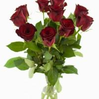 Pugét růží