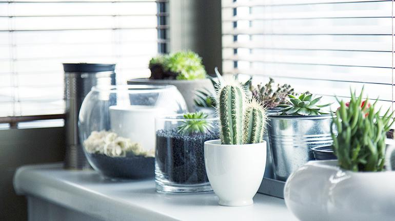 Jarní dekorace oken – nápady a inspirace